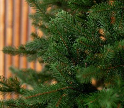 елки премиум класса купить украина